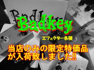 Badkey