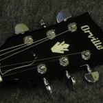 Orville/ ES-335 CH