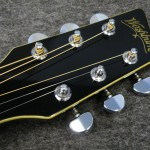 "Washburn/ EA20MX Greg Allman Limited Edition ""Melissa"""