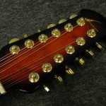Celebrity (by Ovation) / CC265-AS 12-STRING