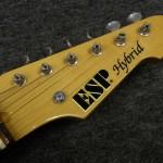 ESP / Hybrid