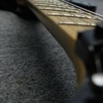 ESP / Maverick Deluxe